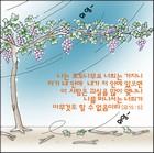 조회수 : 16600, 작성일 : 2005-12-21